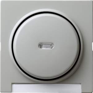 067042 Одинарная клавиша с полем для надписи и подсветкой