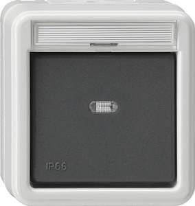 010631 Выключатель одноклавишный универсальный IP66