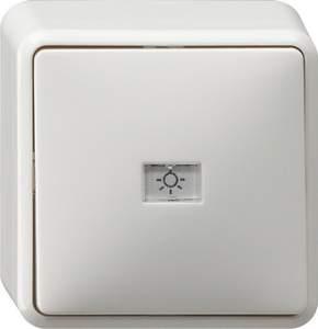 015213 Кнопочный выключатель с полем для надписи IP20