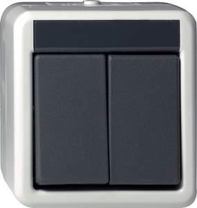 015530 Кнопочный выключатель двуклавишный IP44