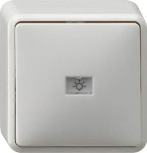 015613 Кнопочный выключатель одноклавишный IP20