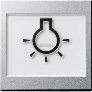 """021626 Клавиша с полем для надписи 37*47 мм  и символом """"свет"""""""