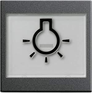 """021628 Клавиша с полем для надписи 37*47 мм  и символом """"свет"""""""