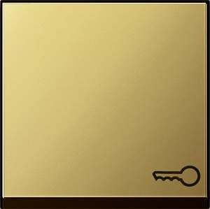 """0287604 Клавиша с пиктограммой """"ключ"""""""