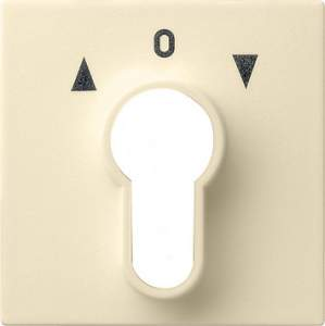 066401 Накладка выключателя с ключом