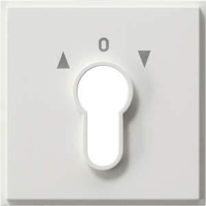 0664111 Накладка выключателя с ключом