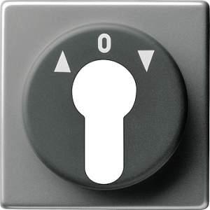 066420 Накладка выключателя с ключом
