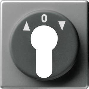 0664203 Накладка выключателя с ключом