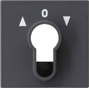 066428 Накладка выключателя с ключом
