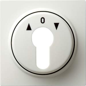 066440 Накладка выключателя с ключом