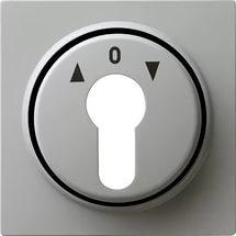 066442 Накладка выключателя с ключом