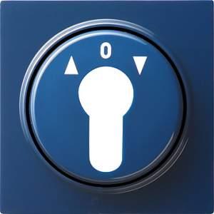 066446 Накладка выключателя с ключом