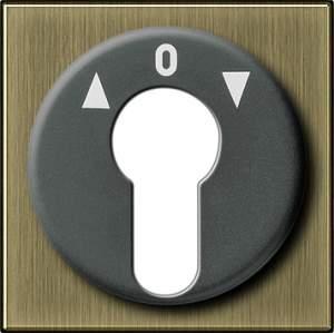 0664603 Накладка выключателя с ключом