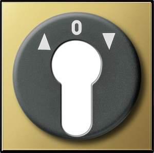 0664604 Накладка выключателя с ключом