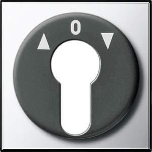 0664605 Накладка выключателя с ключом