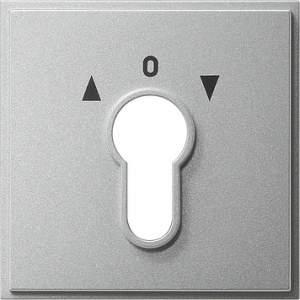066465 Накладка выключателя с ключом