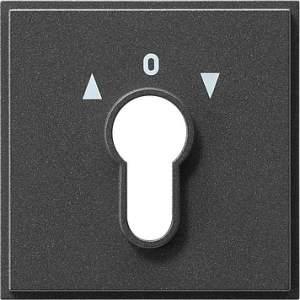 066467 Накладка выключателя с ключом