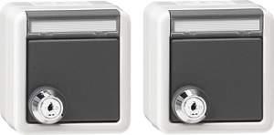078730 Набор из 2 розеток с запирающейся на ключ крышкой IP44