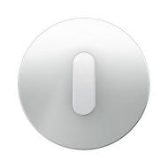 Berker 10012083 Накладка с ручкой для поворотных переключателей, Berker R.1, стекло цвет: полярная белизна серия  купить в Москв