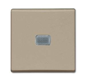 1012-0-2165 (2006/1 UCGL-93) BJB Basic 55 Шамп Выключатель 1-клавишный с подсветкой