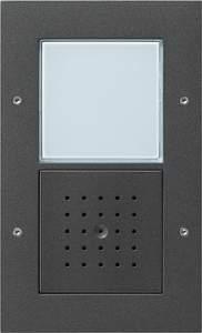 126667 Плоская наружная дверная одноканальная станция