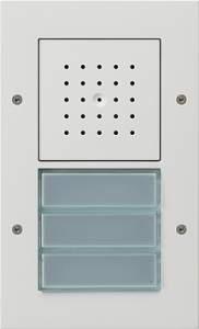 126766 Плоская наружная дверная трехканальная станция