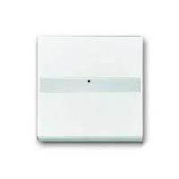 1731-0-1552 BJE Solo/Future Антрацит Клавиша с полем для надписи, со световодом, для выкл./перекл./кнопок