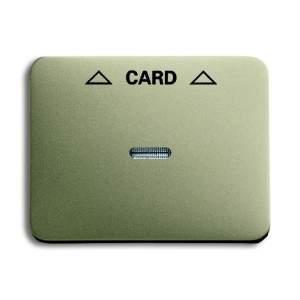 1792-260-101 BJE Alpha Nea/Exl Палладий Накладка карточного выкл (мех 2025 U)