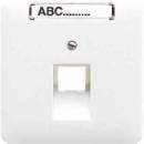 CD569-1NAUALG CD 500/CD plusСветло-серый Накладка 1-ой наклонной ТЛФ/комп розетки с полем для надписи