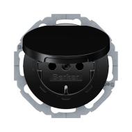 Berker 47442045 Штепсельная розетка SCHUKO с откидной крышкой, черная, с блеском, с защитой от детей VDE 0620-1 серия  купить в