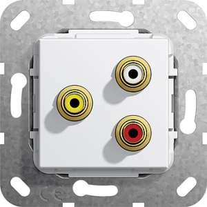 563803 Тюльпан аудио,  гнездо
