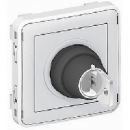 69534 Plexo Серый Мех Выключатель с ключом 2-х поз. 2НО