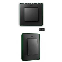 8201620-250 82 Detail Рамка, 2 поста, графит, зеленое основание