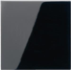 A1561.07SW А 500 ЧерныйНакладка светорегулятора/выключателя нажимного