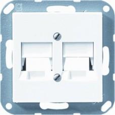 A569-25NWEWW А 500Бел Плата центральная для двойных модульных гнезд фирмы АМР