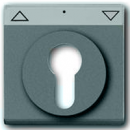1710-0-3448 (1755SLPZ-89-101) BJE Solo/Future Серый Накладка для выключателя с замком