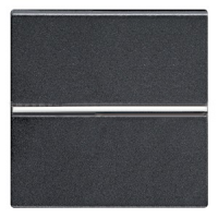 N2201.2 AN NIE Zenit Антрацит Выключатель 1-клавишный 2-полюсной 2 мод
