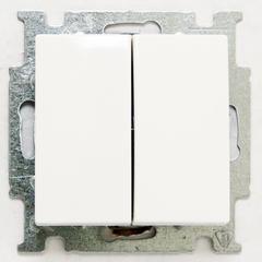 1012-0-2141 (2006/5 UC-94) BJB Basic 55 Бел Выключатель 2-х клавишный