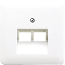 CD569-2UAGR CD 500/CD plusСерый Накладка 2-ой наклонной ТЛФ/комп розетки