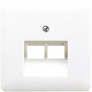CD569-2UALG CD 500/CD plusСветло-серый Накладка 2-ой наклонной ТЛФ/комп розетки