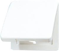 CD590KLGN CD 500/CD plusЗеленый Откидная крышка для розеток и изделий 50х50