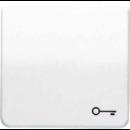 CD590TGR CD 500/CD plusСерый Клавиша 1-я с символом КЛЮЧ