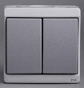 ENN35722 Двухклавишный вык-ль, о/у, серый, в сборе IP55