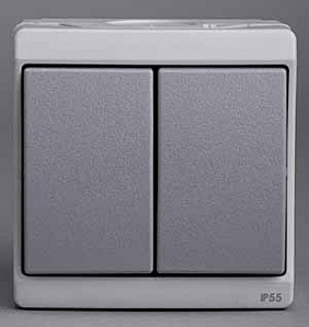 ENN35832 Кнопка двойная, о/у, серый в сборе IP55
