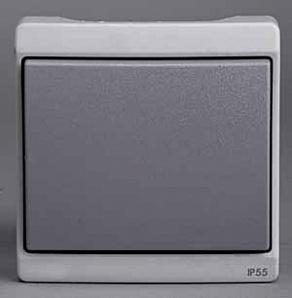 ENN37021 Одноклавишный выключатель комб в блок о/у ,серый, в сборе IP55