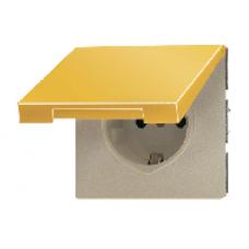GO2520NAKL LS 990 Блеск золота Розетка с/з с крышкой с полем для надписи безвинт зажим