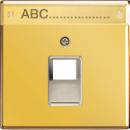 GO2969-1NAUA LS 990 Блеск золота Накладка 1-ой наклонной ТЛФ/комп розетки с полем для надписи