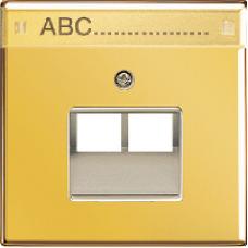 GO2969-2NAUA LS 990 Блеск золота Накладка 2-ой наклонной ТЛФ/комп розетки с полем для надписи