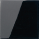 LS1561.07FSW LS 990 ЧерныйНакладка светорегулятора/выключателя нажимного с ДУ (радио)