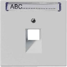 LS969-1NAUALG LS 990 Светло-серый Накладка 1-ой наклонной ТЛФ/комп розетки с полем для надписи